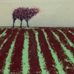 Trees and red furrows