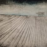 Ploughed Field 1